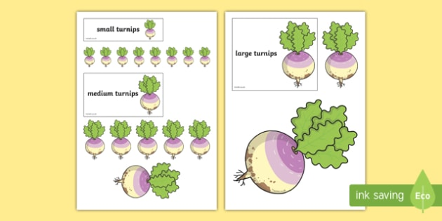 Sorting Turnip Pictures