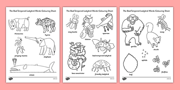 Words Colouring Sheet to Support Teaching on The Bad Tempered Ladybird - colour, stories