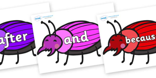 Connectives on Beetles - Connectives, VCOP, connective resources, connectives display words, connective displays