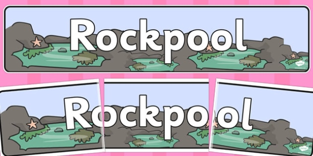 Rock Pool Themed Display Banner - rock pool, display banner