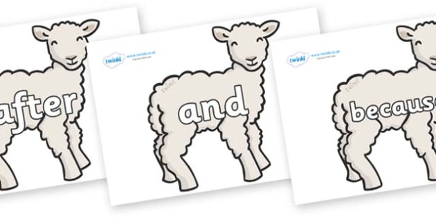 Connectives on Lambs - Connectives, VCOP, connective resources, connectives display words, connective displays