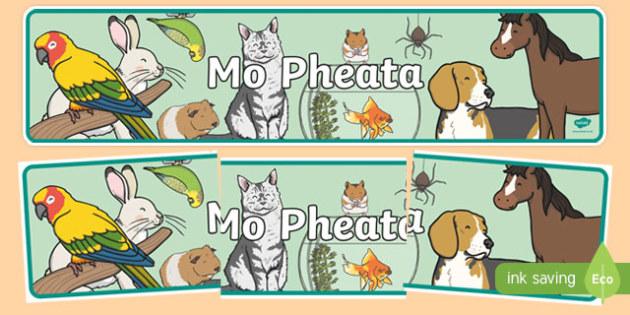 Mo Pheata Display Banner-Irish