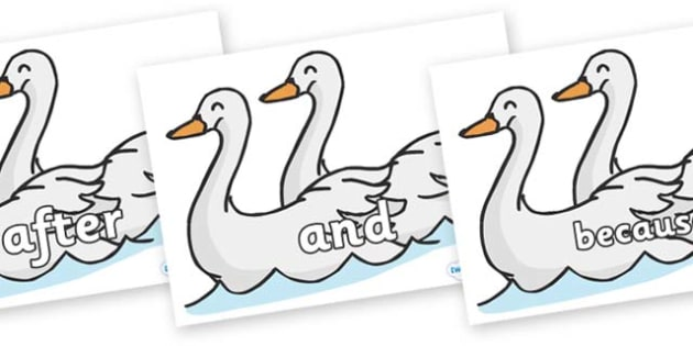 Connectives on Swans - Connectives, VCOP, connective resources, connectives display words, connective displays