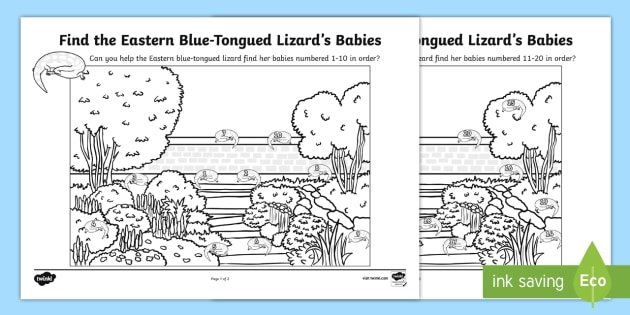 Eastern Blue-Tongued Lizard Number Recognition Activity Sheet - Australian Animals, reptiles, cloze passages, activity sheets, word search, worksheet, research, fas