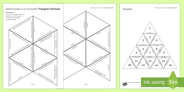 Relationships in an Ecosystem Triangular Dominoes - Tarsia, Triangular Dominoes, Ecosystem, Food Chain, Producer, Predator, Prey, Consumer, Habitat, Pop, plenary activity