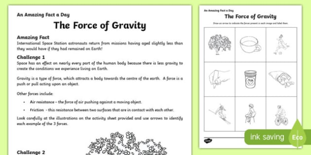 Force of Gravity Activity Sheet worksheet – Gravity Worksheet Middle School
