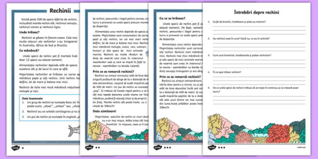 Rechinii - Fișă de lectură pe nivele de dificultate - Rechinii, lectură informativă diferențiată pe nivele de dificultate - animale, citire, lectura. comprehensiune, rechini, viețuitoare marine, materiale didactice, română, romana, material, material