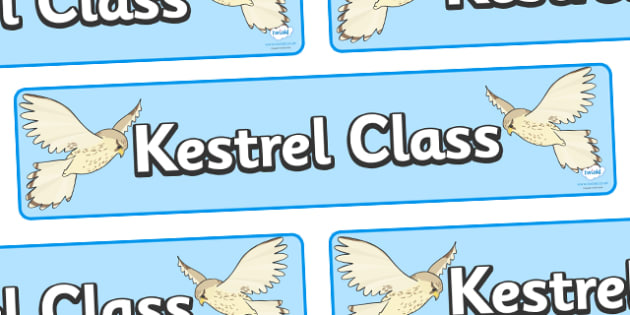 Kestrel Class Display Banner - kestrel class, class banner, class display, kestrels, classroom banner, classroom areas signs, areas, display banner, display