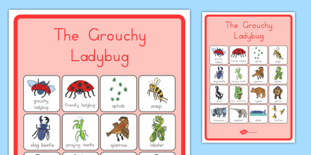 US T T The Grouchy Ladybird Vocabulary Poster