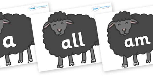 Foundation Stage 2 Keywords on Baa Baa Black Sheep - FS2, CLL, keywords, Communication language and literacy,  Display, Key words, high frequency words, foundation stage literacy, DfES Letters and Sounds, Letters and Sounds, spelling