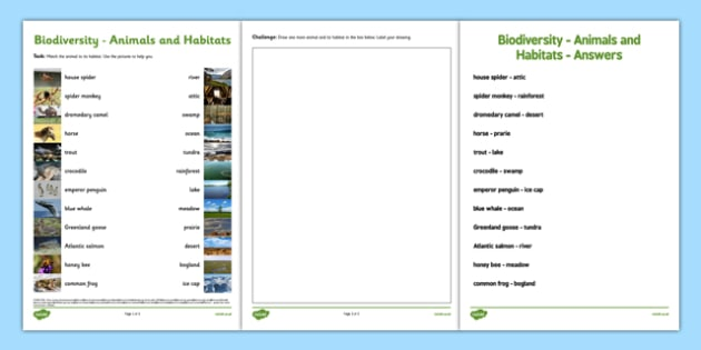 photo regarding Biodiversity Printable Worksheets identify Biodiversity Habitat and Animal Matching Worksheet