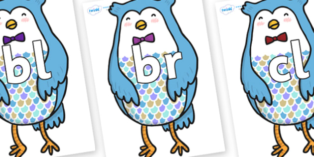 Initial Letter Blends on Owl - Initial Letters, initial letter, letter blend, letter blends, consonant, consonants, digraph, trigraph, literacy, alphabet, letters, foundation stage literacy