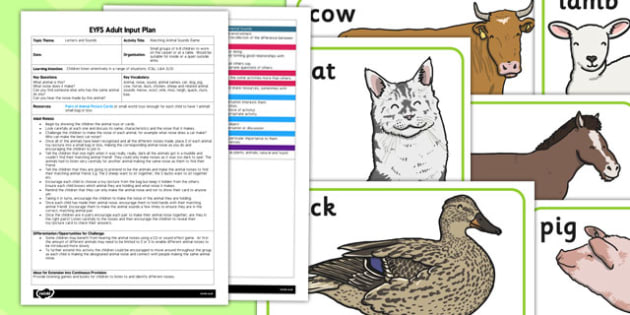 Matching Animal Sounds EYFS Adult Input Plan and Resource Pack