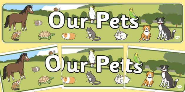 Our Pets Display Banner - display, banner, our pets, our, pets