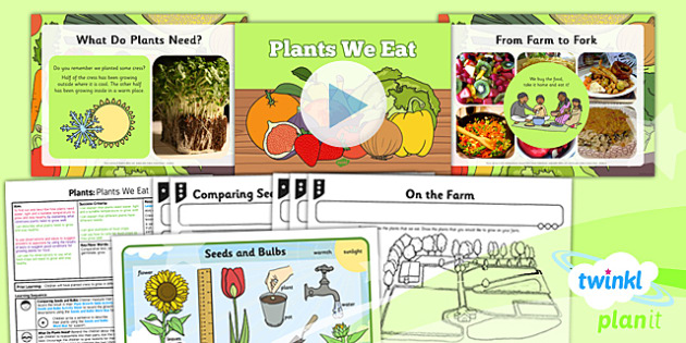 Science: Plants: Plants We Eat Year 2 Lesson Pack 5