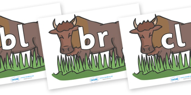 Initial Letter Blends on Bison - Initial Letters, initial letter, letter blend, letter blends, consonant, consonants, digraph, trigraph, literacy, alphabet, letters, foundation stage literacy