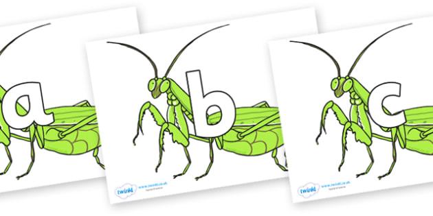 Phoneme Set on Praying Mantis - Phoneme set, phonemes, phoneme, Letters and Sounds, DfES, display, Phase 1, Phase 2, Phase 3, Phase 5, Foundation, Literacy