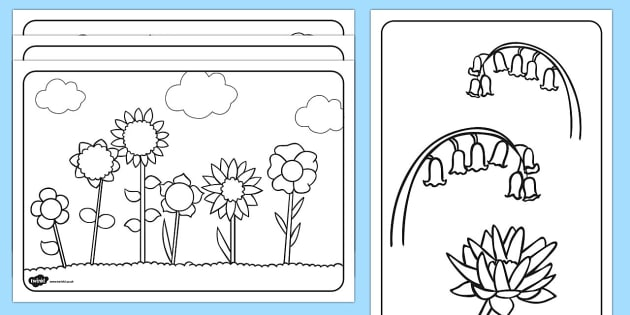 Free Flowers Colouring Pages Primary Flower Colouring In