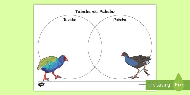 Takahe vs pukeko venn diagram activity new zealand birds pukeko venn diagram activity new zealand birds extinct diagram ccuart Images