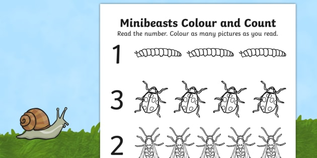 Minibeasts Themed Count and Colour Sheet - counting, colours