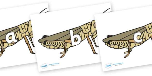 Phase 2 Phonemes on Grasshoppers - Phonemes, phoneme, Phase 2, Phase two, Foundation, Literacy, Letters and Sounds, DfES, display