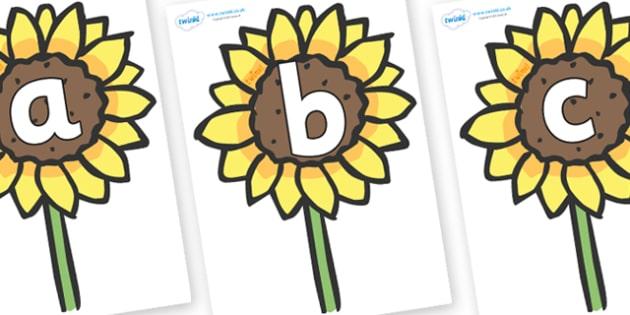 Phoneme Set on Sunflowers - Phoneme set, phonemes, phoneme, Letters and Sounds, DfES, display, Phase 1, Phase 2, Phase 3, Phase 5, Foundation, Literacy