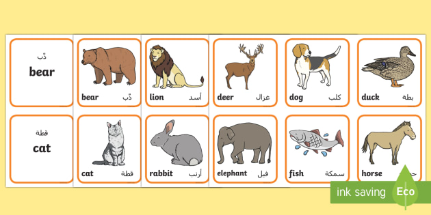 animals matching cards arabic english animals sorting cards activities. Black Bedroom Furniture Sets. Home Design Ideas