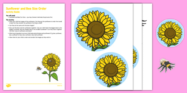 Sunflower and Bee Size Order Busy Bag Resource Pack for Parents - pattern, maths