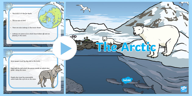 Arctic Animals Colouring Sheets - Arctic, winter, xmas