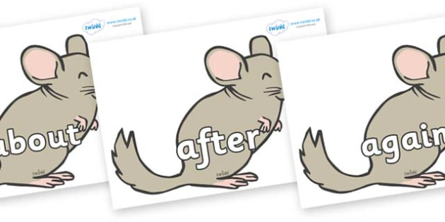 KS1 Keywords on Chinchillas - KS1, CLL, Communication language and literacy, Display, Key words, high frequency words, foundation stage literacy, DfES Letters and Sounds, Letters and Sounds, spelling