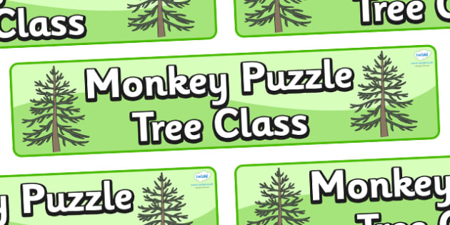 Monkey Puzzle Tree Themed Classroom Display Banner - Themed banner, banner, display banner, Classroom labels, Area labels, Poster, Display, Areas