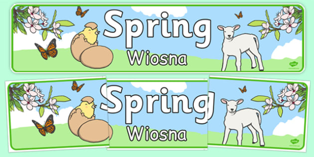 Spring Display Banner Polish Translation - polish, Spring, Display banner, poster, display, lambs, daffodils, new life, flowers, buds, plants, growth