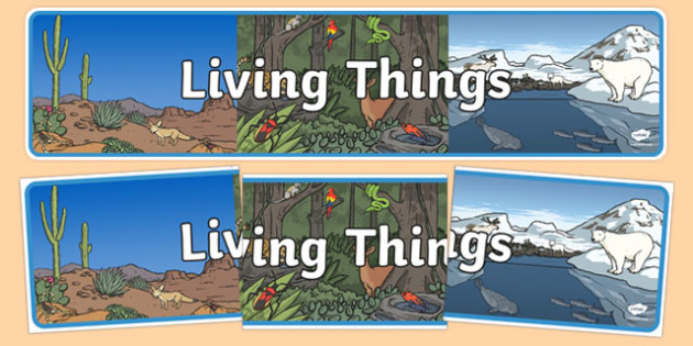 Living Things Display Banner