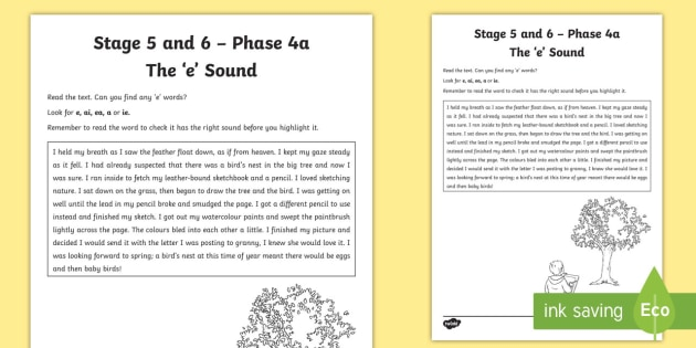 Northern Ireland Linguistic Phonics Stage 5 and 6 Phase 4a 'e' Activity Sheet  - Ni, Worksheet, sound search, text
