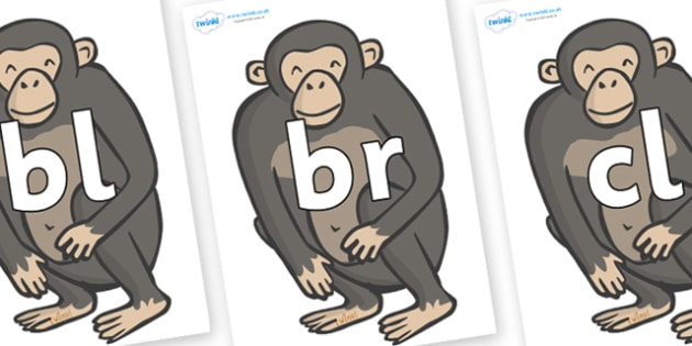 Initial Letter Blends on Chimpanzees - Initial Letters, initial letter, letter blend, letter blends, consonant, consonants, digraph, trigraph, literacy, alphabet, letters, foundation stage literacy