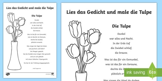 Die Tulpe - ein Gedicht Arbeitsblatt: Lesen und Malen - Gedicht
