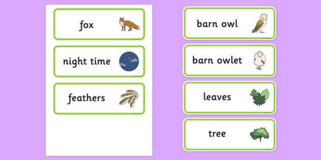 Owl Word Cards - owl, word, cards, word cards, owls, story