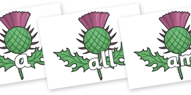 Foundation Stage 2 Keywords on Scottish Thistles - FS2, CLL, keywords, Communication language and literacy,  Display, Key words, high frequency words, foundation stage literacy, DfES Letters and Sounds, Letters and Sounds, spelling