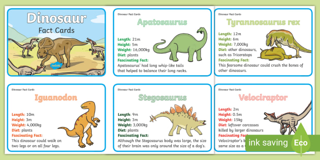 Dinosaur Information Cards - Science Resource - Twinkl