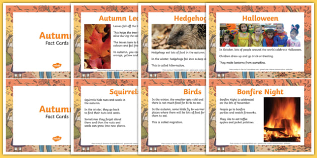 EYFS Autumn Fact Cards - information, reading, seasons, early years