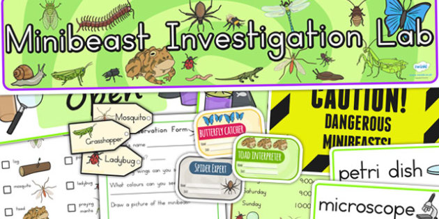 Minibeasts Investigation Lab Roleplay Pack - minibeast, science