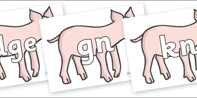 Silent Letters on Piglets - Silent Letters, silent letter, letter blend, consonant, consonants, digraph, trigraph, A-Z letters, literacy, alphabet, letters, alternative sounds
