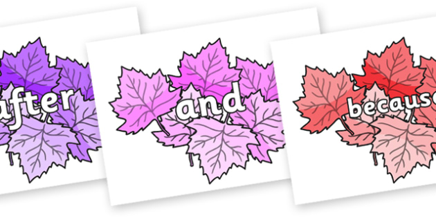 Connectives on Autumn Leaves (Multicolour) - Connectives, VCOP, connective resources, connectives display words, connective displays