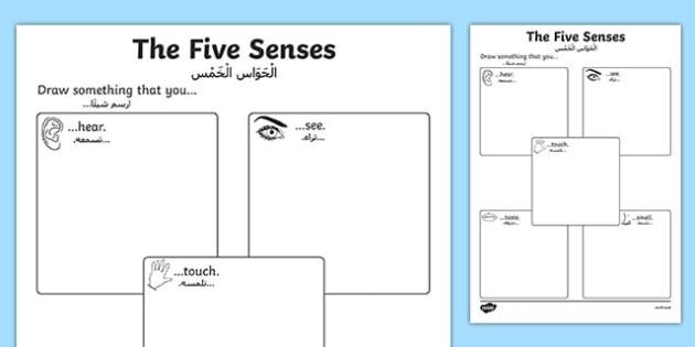 The Five Senses Drawing Activity Sheet - Arabic Translation, worksheet