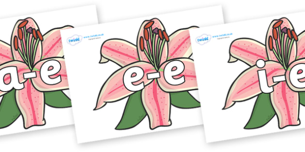 Modifying E Letters on Lilies - Modifying E, letters, modify, Phase 5, Phase five, alternative spellings for phonemes, DfES letters and Sounds