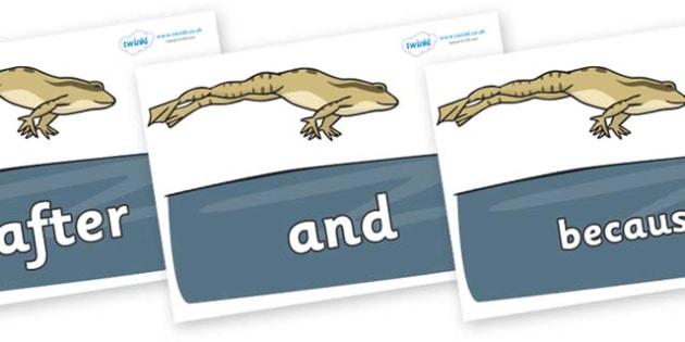 Connectives on Frog - Connectives, VCOP, connective resources, connectives display words, connective displays
