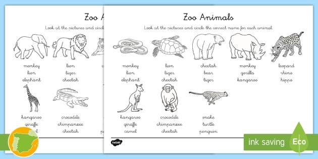 NEW * A2 Ficha de actividad: Lee y colorea - Los animales del