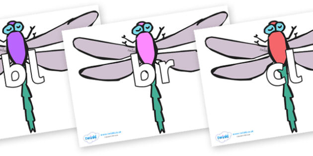 Initial Letter Blends on Dragonflies - Initial Letters, initial letter, letter blend, letter blends, consonant, consonants, digraph, trigraph, literacy, alphabet, letters, foundation stage literacy