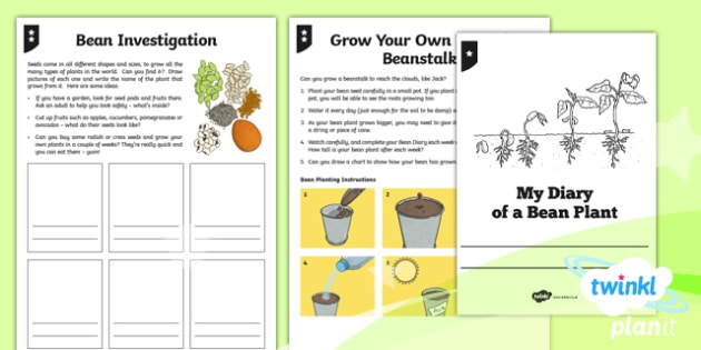 Plants: Jack and the Beanstalk Y3 Home Learning Tasks - Traditional stories, life processes, living things, explanation texts, seed