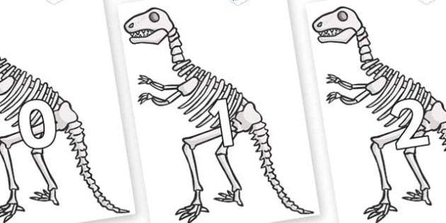 Numbers 0-50 on Dinosaur Skeletons - 0-50, foundation stage numeracy, Number recognition, Number flashcards, counting, number frieze, Display numbers, number posters